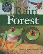 Rain Forest (Closer Look at)