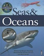Seas and Oceans (Closer Look at)