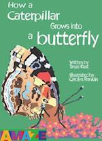 How A Caterpillar Grows Into A Butterfly (Amaze)