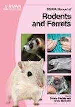 BSAVA Manual of Rodents and Ferrets (Bsava British Small Animal Veterinary Association)