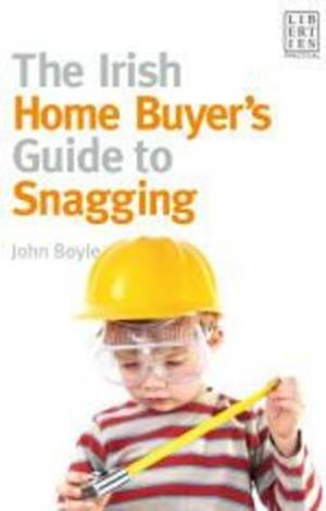 The Irish Home Buyer's Guide to Snagging