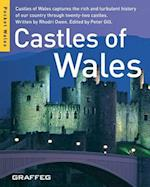 Castles of Wales (Mini)