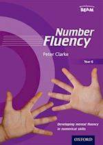 Number Fluency Year 6 Developing mental fluency in numerical skills