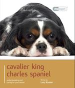 Cavalier King Charles (Dog Expert)