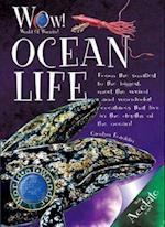 Ocean Life (World of Wonder)