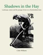 Shadows in the Hay