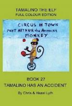 Tamalino Has an Accident (Tamalino the Elf, nr. 27)