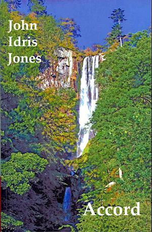 Bog, paperback Accord af John Idris Jones