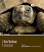 Tortoise - Pet Expert (Pet Expert)