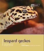 Leopard Gecko - Pet Expert (Pet Expert)