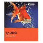 Goldfish - Pet Friendly (Pet Friendly)