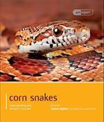 Corn Snake (Pet Expert)