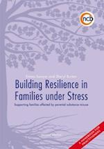 Building Resilience in Families Under Stress (Toolkit Series)