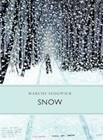 Snow (Little Toller Monographs)
