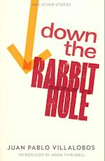 Down the Rabbit Hole af Rosalind Harvey, Adam Thirlwell, Juan Pablo Villalobos