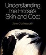 Understanding the Horse's Skin and Coat