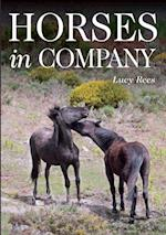 Horses in Company