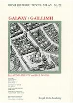 Irish Historic Towns Atlas No. 28 (Irish Historic Towns Atlas, nr. 28)