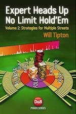 Expert Heads Up No Limit Hold'em