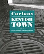 Curious Kentish Town af Martin Plaut