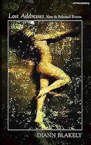 Bog, paperback Lost Addresses af Diann Blakely