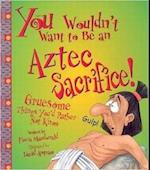 You Wouldn't Want to be an Aztec Sacrifice (You Wouldn't Want to Be)