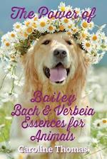 The Power of Bailey, Bach & Verbeia Essences for Animals