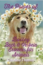 Power of Bailey, Bach and Verbeia Essences for Animals
