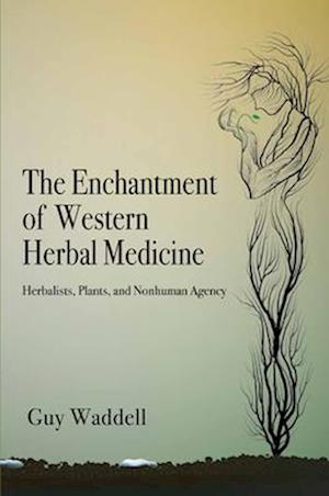 The Enchantment of Western Herbal Medicine