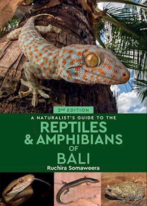 A A Naturalist's Guide to the Reptiles & Amphibians of Bali (2nd edition)