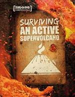 Surviving an Active Supervolcano (Surviving the Impossible)