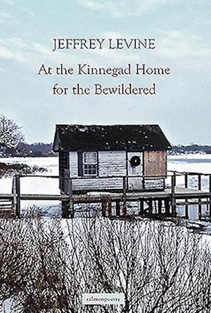 At the Kinnegad Home for the Bewildered