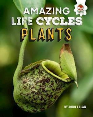 Plants - Amazing Life Cycles