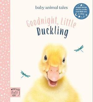 Goodnight, Little Duckling