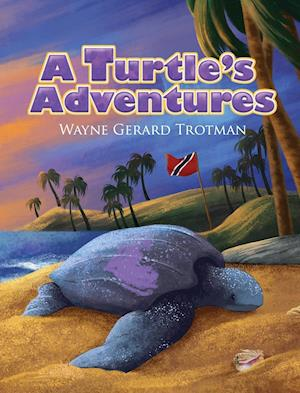 A Turtle's Adventures