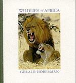 Wildlife of Africa (Gerald Marc Hoberman Collection Paperback)