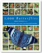 1000 Butterflies