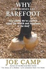 Why Our Horses Are Barefoot