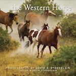 2018 Western Horse Calendar