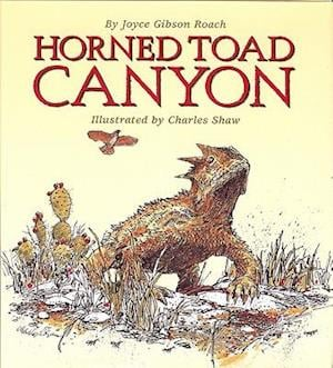 Horned Toad Canyon