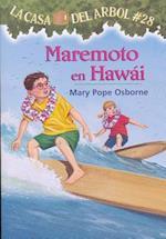 Maremoto en Hawai / High Tide in Hawaii (La Casa del Arbol)