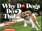 Why Do Dogs Do That?