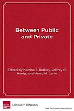 Between Public and Private (Educational Innovations)