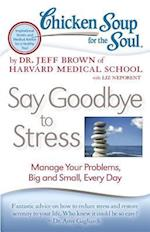 Chicken Soup for the Soul Say Goodbye to Stress (CHICKEN SOUP FOR THE SOUL)