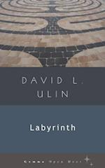 Labyrinth af David L. Ulin