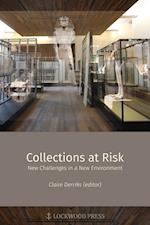 Collections at Risk (Material and Visual Culture of Ancient Egypt, nr. 4)