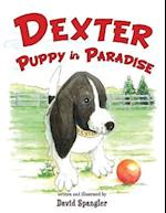 Dexter, Puppy in Paradise