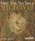 Next Time You See a Spiderweb (Next Time You See)