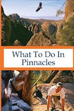 What to Do in Pinnacles af Richard Hauser