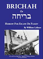 Brichah: (Hebrew for Escape or Flight)